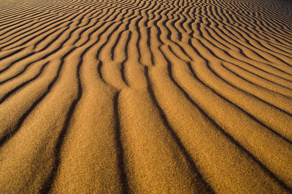 Ripples created by wind in the sand at the dunes of Erg Zehar, near M'hamid, Morocco.