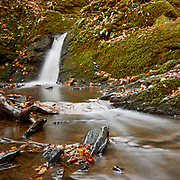 Fallen autumn leaves add a splash of colour to a small waterfall and stream over mossy rocks in a woodland setting.