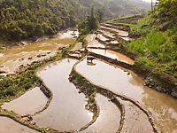 Aerial view of Sapa rice terraces in Vietnam.