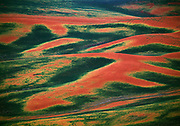 Aerial image of wheatfields in the Palouse, eastern Washington, Pacific Northwest by Randy Wells