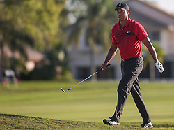 February 25, 2018 - Palm Beach Gardens, Florida, U.S. - Tiger Woods walks on the 18th hole during the final round of the 2018 Honda Classic at PGA National Resort and Spa in Palm Beach Gardens, Fla., on Sunday, February 25, 2018. (Credit Image: © Andres Leiva/The Palm Beach Post via ZUMA Wire)