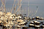 Israel Sea Of Galilee, Rocks on the shore