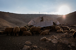 6 October 2018, Jordan Valley, West Bank, Occupied Palestinian Territories: Ecumenical Accompaniers from the World Council of Churches Ecumenical Accompaniment Programme in Palestine in Israel accompany shepherds in many parts of the West Bank, providing an international presence known to have a mitigating effect on confrontations between Israeli settlers and the Palestinians. EAs' presence also helps Palestinians access lands they otherwise might not have dared to continue to cultivate. In the West Bank's Area C, any land that isn't cultivated for a period of three years becomes property of the state, the shepherds explain, so accessing their lands regularly is vital for the communities and their herds.