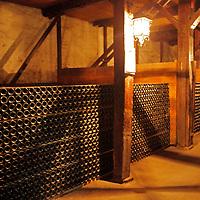 South America, Chile, Santiago. Wine Bottles at Santa Rita Winery.