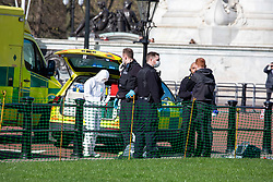 © Licensed to London News Pictures. 16/03/2020. London, UK. Police and medics in masks outside Buckingham Palace talk to a man (R). It is not clear if he is being arrested. Government ministers warn that the over 70s could face self-isolation for weeks as the Coronavirus disease pandemic continues . Photo credit: Alex Lentati/LNP