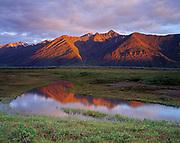 Tundra pond and the Trans Alaska Pipeline with a portion of the Endicott Mountains beyond, Brooks Range south of Atigun Pass, Alaska.