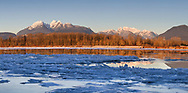 The Golden Ears mountains reflected in the Fraser River at sunset during a cold snap in the Fraser Valley. This view is photographed from Brae Island Regional Park's Tavistock Point in Langley, British Columbia with the unusual circumstance of a partly frozen Fraser River in the foreground.  The Golden Ears (Mount Blanshard) are McPhaden Peak, Edge Peak and Blanshard Peak. On the right is Mount Robie Reid.
