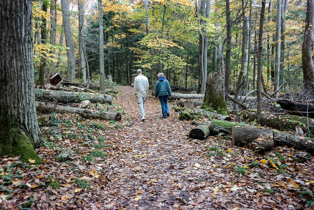 Hikers along the Falls Trail in Ricketts Glen State Park, Benton, PA, USA