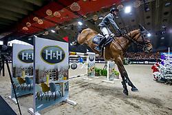 Kukuk Christian, GER, Quintino 9<br /> Jumping Mechelen 2019<br /> © Hippo Foto - Sharon Vandeput<br /> 30/12/19