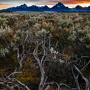 Sunset over sage in Grand Teton National Park, Wyoming.