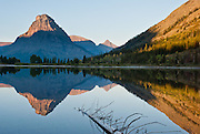 """Sinopah Mountain (8271 feet or 2521 meters) reflects in Pray Lake at sunrise, in Glacier National Park, Montana, USA. Since 1932, Canada and USA have shared Waterton-Glacier International Peace Park, which UNESCO declared a World Heritage Site (1995) containing two Biosphere Reserves (1976). Rocks in the park are primarily sedimentary layers deposited in shallow seas over 1.6 billion to 800 million years ago. During the tectonic formation of the Rocky Mountains 170 million years ago, the Lewis Overthrust displaced these old rocks over newer Cretaceous age rocks. Glaciers carved spectacular U-shaped valleys and pyramidal peaks as recently as the Last Glacial Maximum (the last """"Ice Age"""" 25,000 to 13,000 years ago). Of the 150 glaciers existing in the mid 1800s, only 25 active glaciers remain in the park as of 2010, and all may disappear by 2020, say climate scientists."""