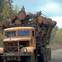 Logging in Siberia.  Accession #: 0.94.185.003.24