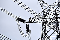 April 30, 2019 - Barpeta, Assam, India - A worker working on a large electricity tower on the eve of May Day or Labour Day at Barpeta, Assam, India on Tuesday,  April 30, 2019. (Credit Image: © David Talukdar/NurPhoto via ZUMA Press)