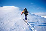 Alaska. Talkeetna Mts. Hatchers Pass. Backcountry skiing. Breaking trail towards Bald Mtn Ridge (4500 ft).
