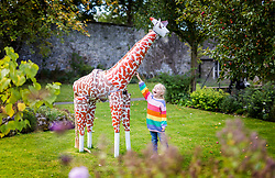 © Licensed to London News Pictures. 20/09/2020. Settle UK. 5 year old Scarlet plays with a Giraffe made entirely out of flowerpots at the annual Flowerpot Festival held in the Yorkshire Dales market town of Settle. Photo credit: Andrew McCaren/LNP