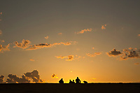 NC01426-00...NORTH CAROLINA - Watching the sunset from a tall sand dune, a popular activity at Jockey's Ridge State Park on the Outer Banks at Nags Head.