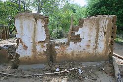 House Felled By Elephant