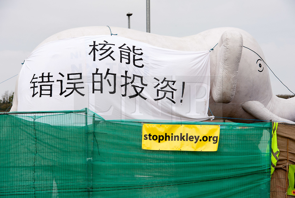 "© Licensed to London News Pictures. 19/10/2015. Hinkley Point, Somerset, UK.  Anti-nuclear protest by the ""Osborne's Folly"" (after the Chancellor George Osborne) group, protesting against the proposed new nuclear power station Hinkley C and against Chinese investment in the project.  The group has occupied a roundabout near the site and erected an inflatable white elephant with a banner written in Chinese and say they want to send a message to the visiting Chinese President Xi Jinping that EDF's Hinkley C would be ""a bad investment"" for the Chinese state. They say that the stalled project has become ""Osborne's Energy Folly"" and should now be abandoned.  Theo Simon, one of the campaigners said: """"Ironically, the Chinese are leading the world in renewable energy investment in their own country, where there is also a growing anti-nuclear movement"". Photo credit : Simon Chapman/LNP"