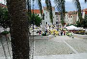 """Fairy lights"" on palm tree, town square (Kacicev trg), Makarska, Croatia"
