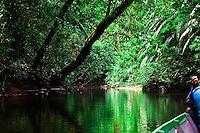 Taking a longboat ride along the Batang river, in the jungle near the Kalimantan border in Sarawak.