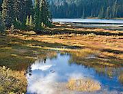 Warm Autumn Afternoon Light on Reflection Lake, Mt Rainier National Park, Washington State