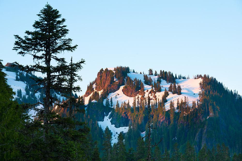 Paradise area at Mount Rainier National Park, Washington State, USA