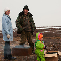 Vassili Vauchesky bides time on reindeer sled as he spends two weeks on the tundra, without a tent, watching the herd.