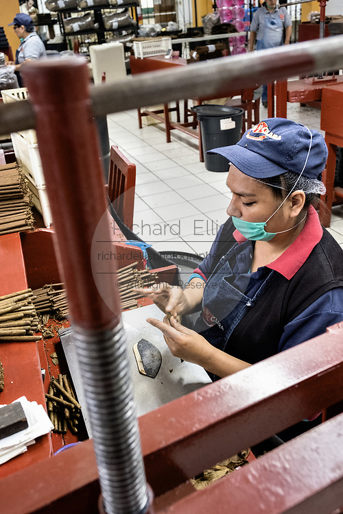 A cigarmaker called a torcedor stacks hand rolls fine cigars at her rolling table at the Santa Clara cigar factory in San Andres Tuxtlas, Veracruz, Mexico. The factory follows traditional hand rolling using the same process since 1967 and is considered by aficionados as some of the finest cigars in the world.
