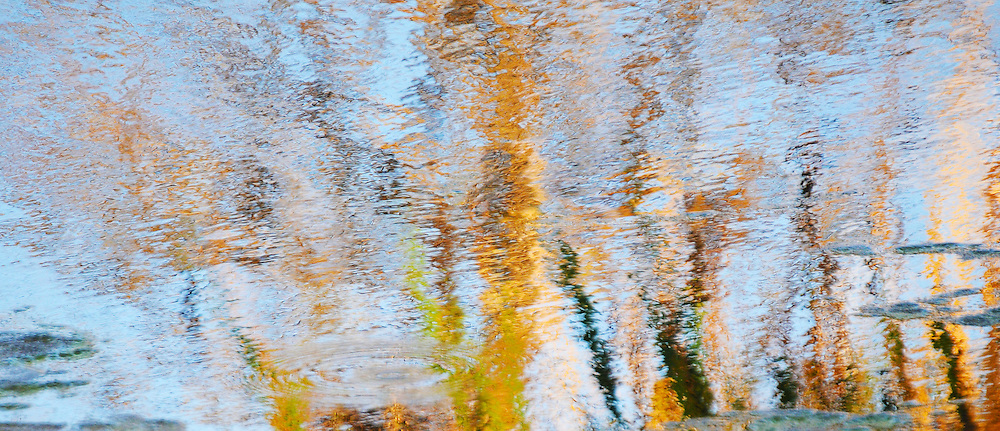 Colorful created compositions from reflected waters in swamp areas.