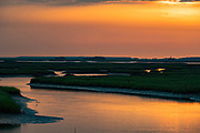 A great egret also called a great white heron hunts for fish in the salt marshes of the Cape Romain National Wildlife Refuge at sunrise near Charleston, South Carolina. The 66,287 acre National Wildlife Refuge encompass water impoundments, creeks, bays, emergent salt marsh and barrier islands most of which is only accessible by boat.