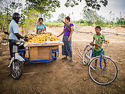 25 MAY 2013 - MAE SOT, TAK, THAILAND:     Burmese women haggle over the price of a fruit with a Burmese merchant, left, who came out to their unofficial village of Burmese refugees north of Mae Sot, Thailand. They live on a narrow strip of land about 200 meters deep and 400 meters long that juts into Thailand. The land is technically Burma but it is on the Thai side of the Moei River, which marks most of the border in this part of Thailand. The refugees, a mix of Buddhists and Christians, settled on the land years ago to avoid strife in Myanmar (Burma). For all practical purposes they live in Thailand. They shop in Thai markets and see their produce to Thai buyers. About 200 people live in thatched huts spread throughout the community. They're close enough to Mae Sot that some can work in town and Burmese merchants from Mae Sot come out to their village to do business with them.   PHOTO BY JACK KURTZ