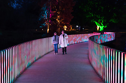 © Licensed to London News Pictures. 21/11/2017. London, UK. Visitors walk over an an illuminated bridge at the opening of Christmas at Kew at Royal Botanical Gardens, Kew. The spectacular displays are illuminated by over one million tiny twinkling lights placed all over Kew Gardens - open Wednesdays – Sundays from 22 November 2017 – 2 January 2017. London, UK. Photo credit: Ray Tang/LNP