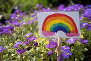 Local response to Coronavirus is felt on a street by street level as children put up rainbow paintings in the windows of their homes on 12th April 2020 in Birmingham, England, United Kingdom. In this case one child has put up a tiny laminated rainbow in amongst very small flowers in a front garden flower bed. Rainbows, mostly drawn by children, have been appearing in windows right across the UK as people are locked in their homes during the coronavirus outbreak, and want to give out a positive message, in particular to NHS staff and other key workers. Coronavirus or Covid-19 is a new respiratory illness that has not previously been seen in humans. While much or Europe has been placed into lockdown, the UK government has announced more stringent rules as part of their long term strategy, and in particular social distancing.