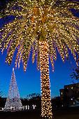 Charleston Christmas