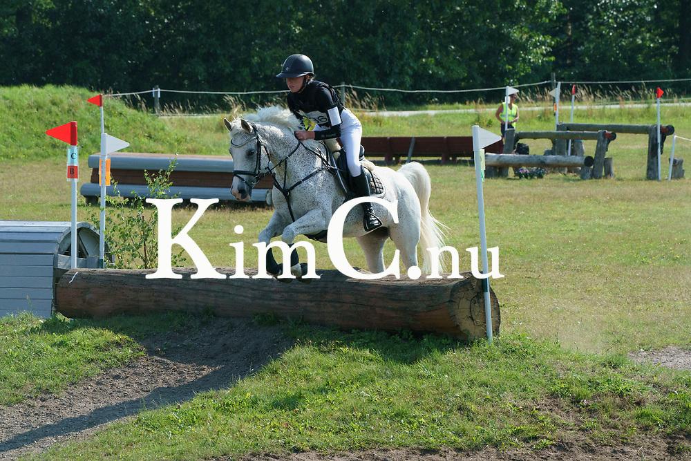 Zaspa Isa ox 2002 skm D Larissa Nilsson Foto: KimC.nu by Kim C Lundin