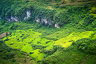 Fields along the road between Bac Ha and Coc Pai (Xin Man), Vietnam, Southeast Asia
