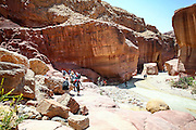 Wadi Zered (Wadi Hassa or Hasa) in western Jordan. A sand stone canyon with fresh running water. Flowing into the Dead Sea