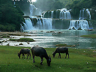 Cao Bang area in the north of Vietnam. Ban Gioc waterfall.
