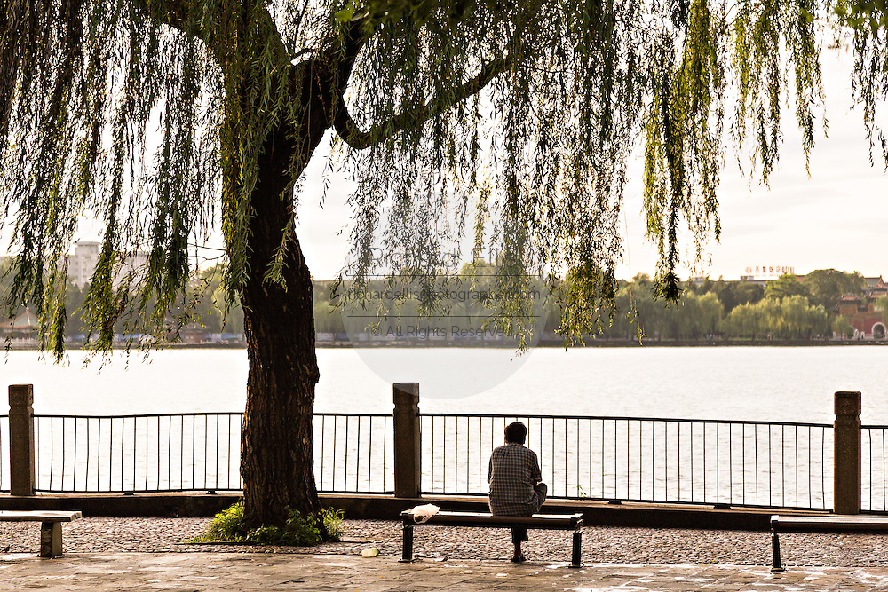 A woman relaxes under the shade of a willow tree in Beihai Park Beijing, China .