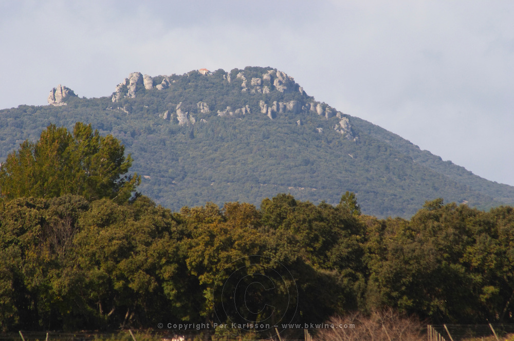 Mont St Baudille mountain top with a chapel on the top where it is said that a long time ago some virgins were raped. Domaine Alain Chabanon, previously Font Caude, in the Lagamas village. Montpeyroux. Languedoc. France. Europe. Mountains in the background.