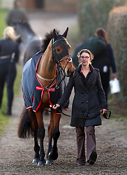 A horse is led down to the parade ring ahead of the Book For Easter Now Conditional Jockeys Mares Handicap Hurdle during Injured Jockeys Fund Charity Raceday at Plumpton Racecourse.