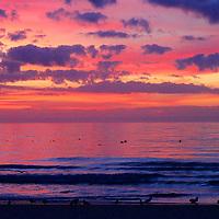 Local.. Myrtle Beach, Murrells Inlet, Garden City, Litchfield, Pawleys Island.. Beautiful scenes for sale