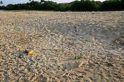 Plastic bottles litter on sandy beach, Nilavelli beach, Trincomalee, Sri Lanka, Asia