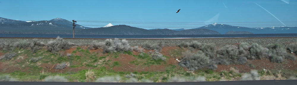 scene along a cross country trip with in a classic Mini Cooper auto - bald eagle dot and Klamath Lake and railroad tracks and powerline