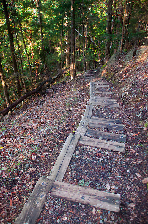 Stairs on Reid Harbor Lookout Trail, Stuart Island, Washington, US