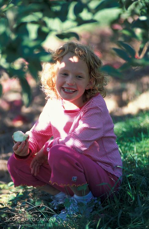 Bolton, MA. USA. A girl eats an apple under an apple tree at the Nicewicz Farm in Massachusetts' Nashoba Valley.  Apple orchard. Macintosh apples.