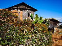 KYAING TONG, MYANMAR - CIRCA DECEMBER 2017:  Village in the area of Kyaing Tong in Myanmar