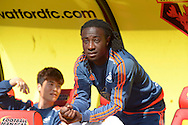 Marvin Emnes of Swansea City looking on from the dugout before k/o. Barclays Premier League, Watford v Swansea city at Vicarage Road in London on Saturday 12th September 2015.<br /> pic by John Patrick Fletcher, Andrew Orchard sports photography.