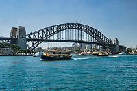 Harbour Bridge & Sydney Harbour