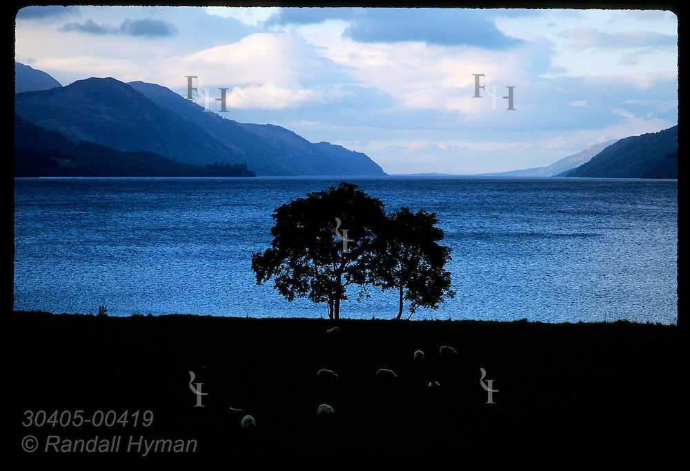 Evening descends along length of Loch Ness as seen from its western terminus at Fort Augustus.